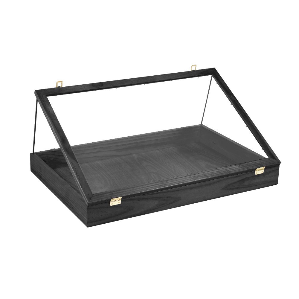 Portable Locking Black Showcase