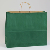 Forest Green Paper Shopping Bag- 16 X 6 X 13 - Box Of 250