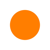 1 In. Orange Blank Circle Label