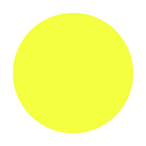 2 in. Fluorscent Yellow Blank Circle Label