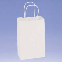 White Paper Shopping Bag - 5.5 In. X 3.25 In. X 8.25 In.