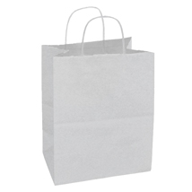 White Paper Shopping Bag- 8.5 In. X 4.75 In. X 10.25 In.