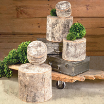 Set of 5 Natural Birch Risers Wood Pedestals