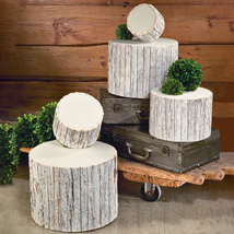 Set Of 5 Whitewash Bark Risers Wood Pedestals