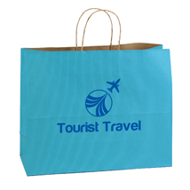 Custom Printed Paper Shopping Bags - Teal